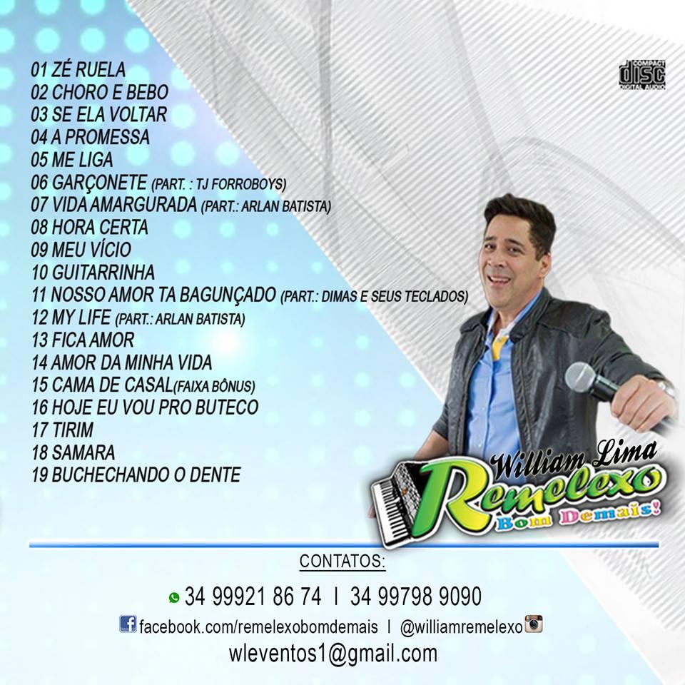 CD 2010 BAIXAR MINEIRINHAS