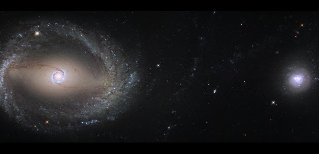 This composite image, created out of two different pointings from Hubble, shows the barred spiral galaxy NGC 1512 (left) and the dwarf galaxy NGC 1510 (right). Both galaxies are about 30 million light-years away from Earth and currently in the process of merging. At the end of this process NGC 1512 will have cannibalised its smaller companion.  Credit: ESA/Hubble, NASA