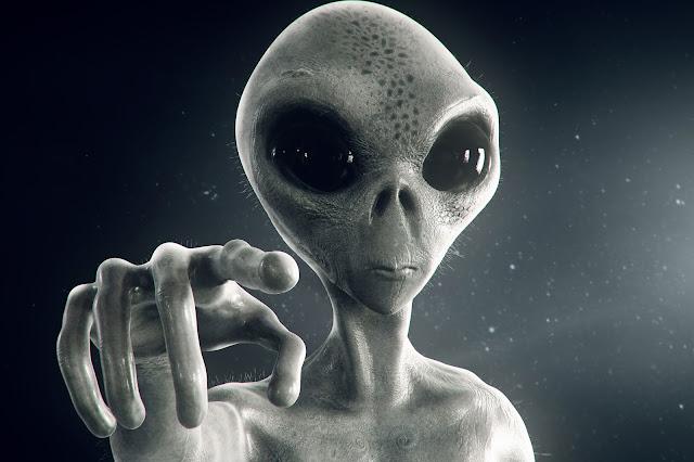 An Alien In A Human Case