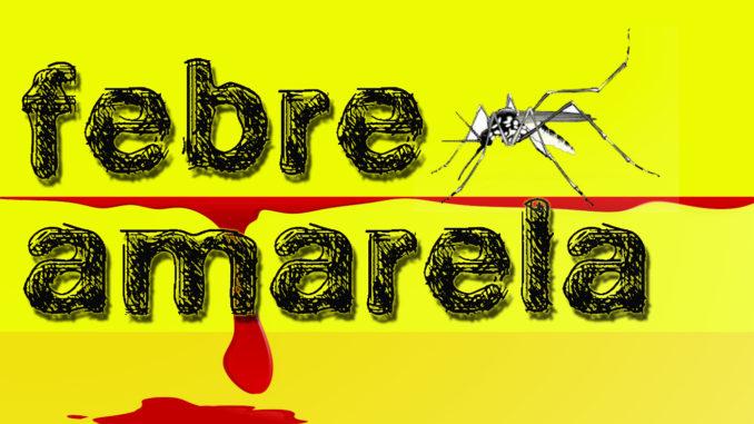 Em uma semana, Brasil registrou 28 mortes por febre amarela