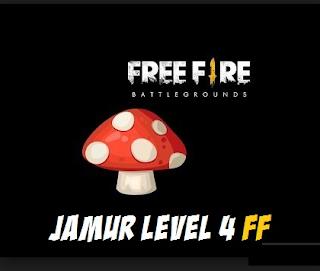 Level 4 mushroom free fire || place mushroom level 4 in free fire and Mushroom Free Fire Function