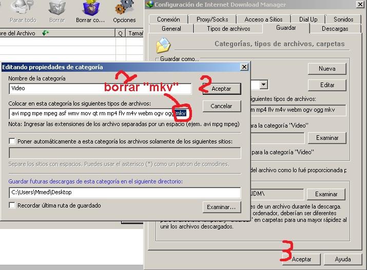 internet download manager descargar