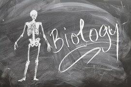 cabang biologi
