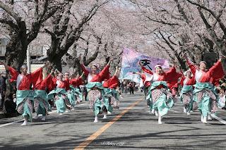 富岡町 さくらまつり2019 夜ノ森桜並木