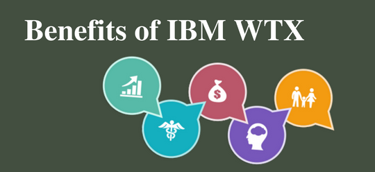 IBM WebSphere Transformation Extender - WTX Benfits