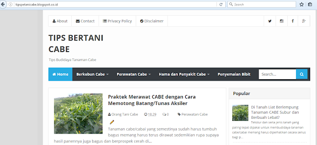 Tampilan Website Tips Bertani Cabe