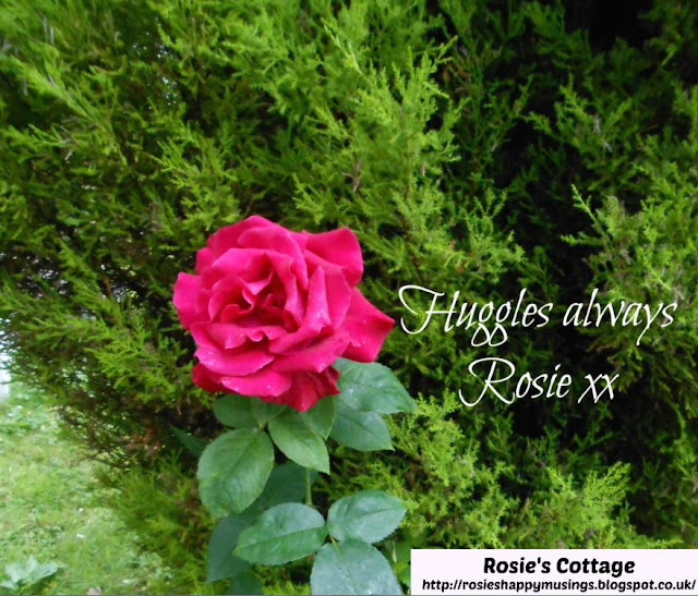 Huggles Always xx