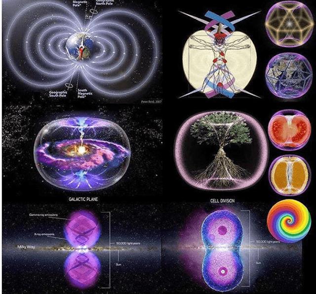 Magnetic Quickening ~ Meg Benedicte Torus-field-725x675