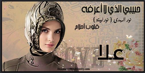 رواية حبيبي الذي لا اعرفه - نور المهدي