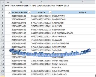 Daftar Nama-Nama Peserta Yang Lulus Pretest PPG/ PPGJ Tahun 2018 Seluruh Indonesia (format excel)