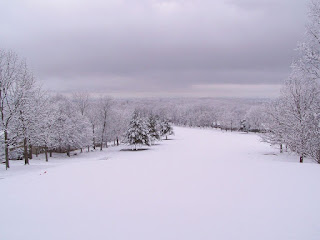 Snow Covered Golf Course