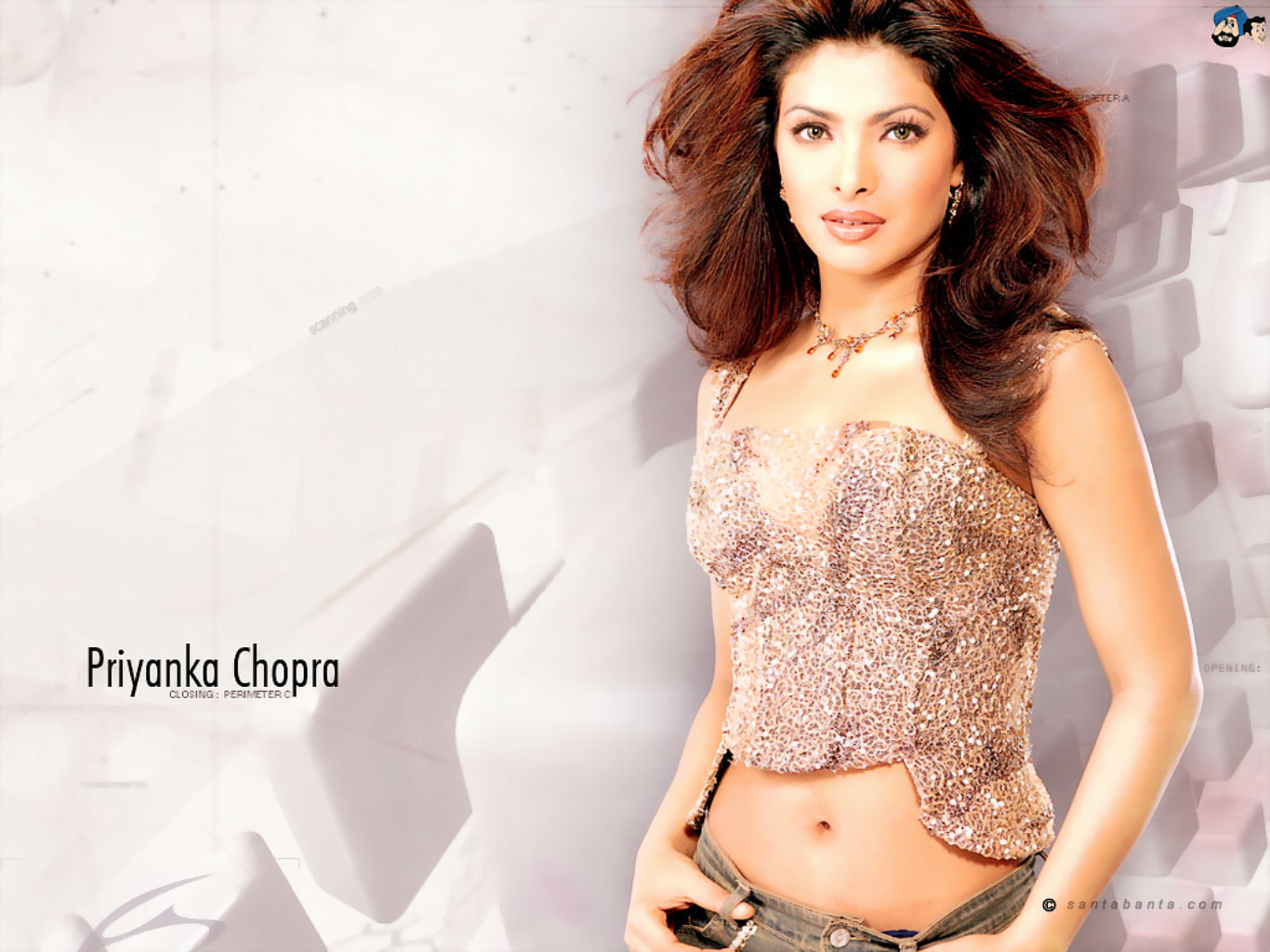 Priyanka Chopra Awesome Hot Desktop Wallpaper