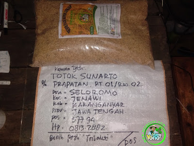 Benih pesana    TOTOK S Karanganyar, Jateng   (Sebelum Packing)