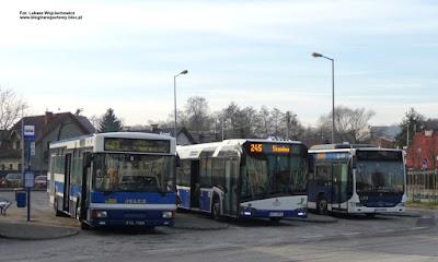 Jelcz M121MB, Solaris Urbino 12, Mercedes-Benz Citaro, MPK Kraków