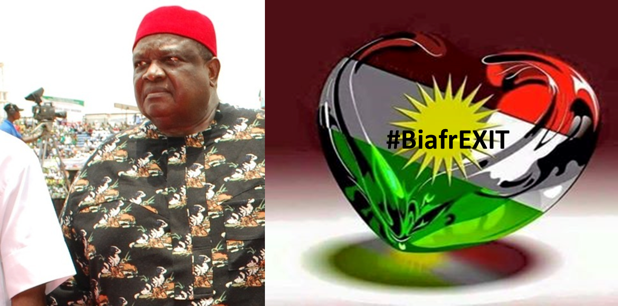 Image result for IGBO SUMMIT IWUANYANWU TALKING ABOUT BIAFRA