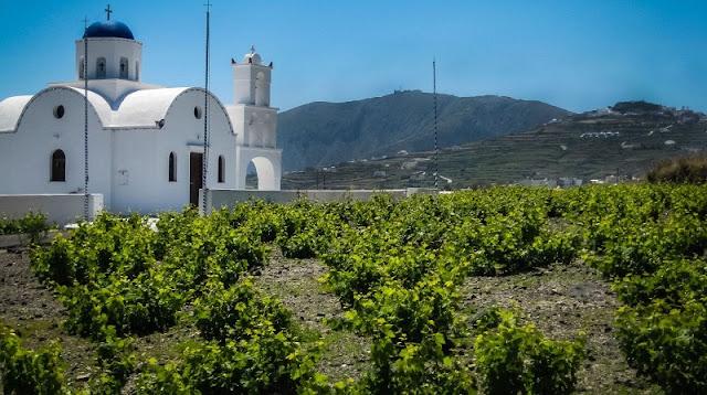 Passeio românticos pelos vinhedos, Santorini