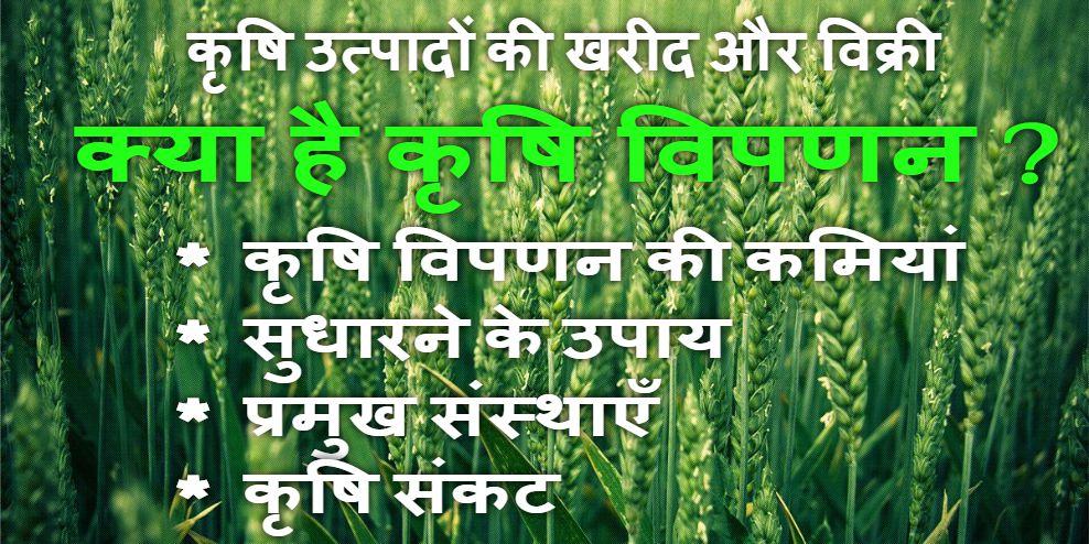 Agriculture Marketing: krishi utpado ki kharid aur vikri