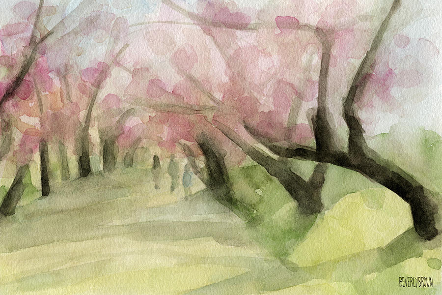 Kulturna citanka Watercolor-painting-of-cherry-blossom-trees-in-central-park-nyc-beverly-brown-prints