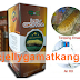 Obat Herbal QNC Jelly Gamat ASLI