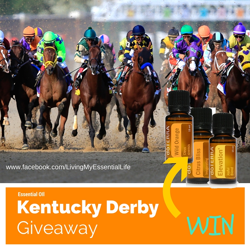 05 also Who Won The Kentucky Derby Winning Horse Full Results Betting Payouts Nyquist Mohaymen Exaggerator 2016 likewise Kentucky Derby 2016 Contenders Update furthermore Winnipeg Bet Derby Downs Saturday additionally Charlotte R ling Oscars Racist To Whites. on oscar nominated 2016 kentucky derby