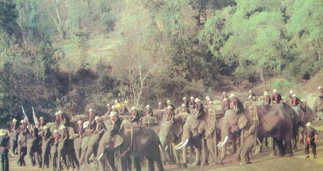 Foto Pasukan gajah Thailand