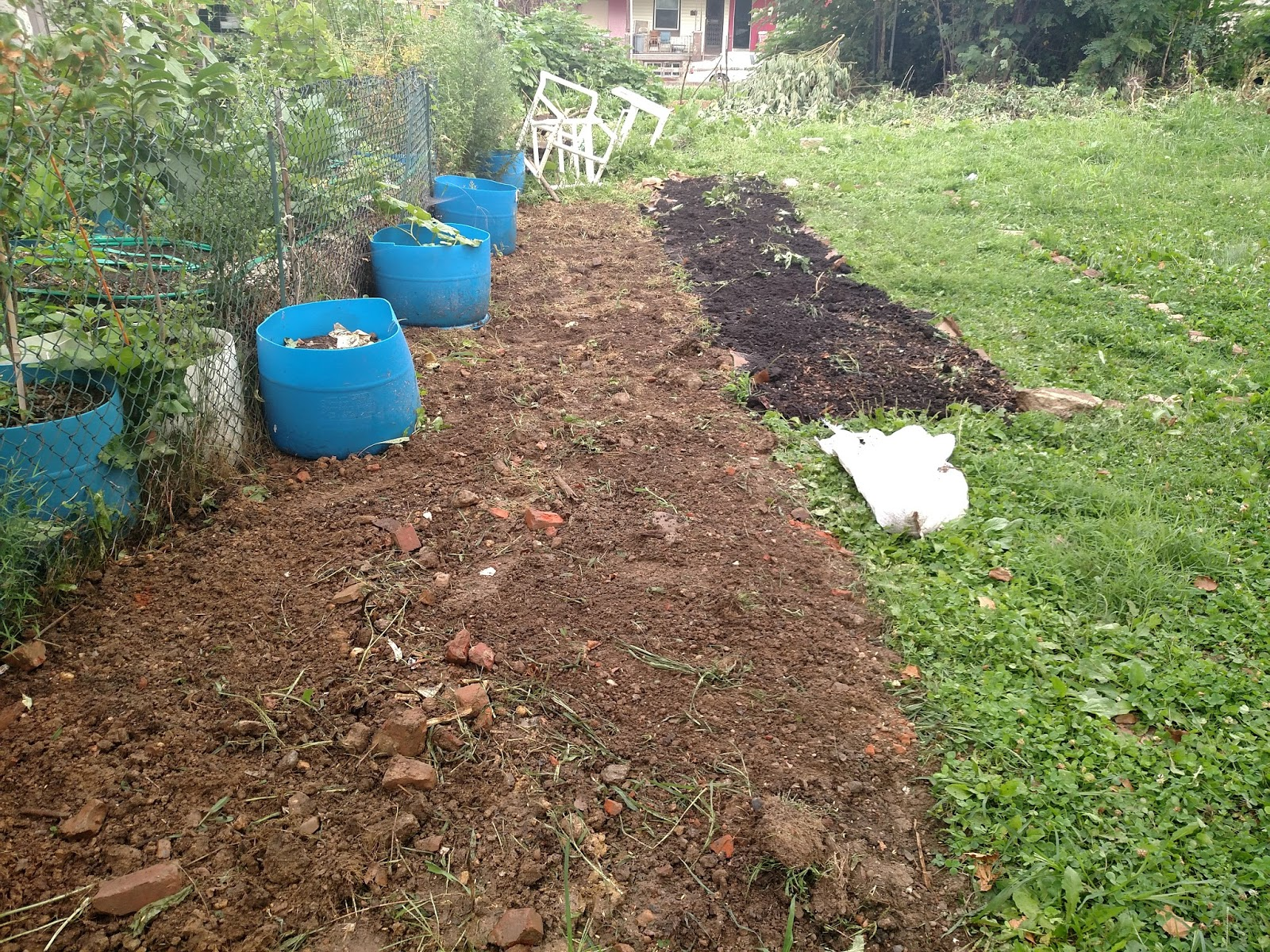 Guerilla Gardening in Philly - Stage 1, Soil Building | Next Succession