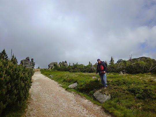Ścieżka na Mokrą Przełęcz.
