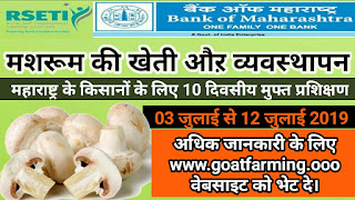 "Free ""Mashroom Farming and Management Training""  in Maharashtra"