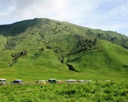 Tips Wisata ke Taman Nasional Baluran
