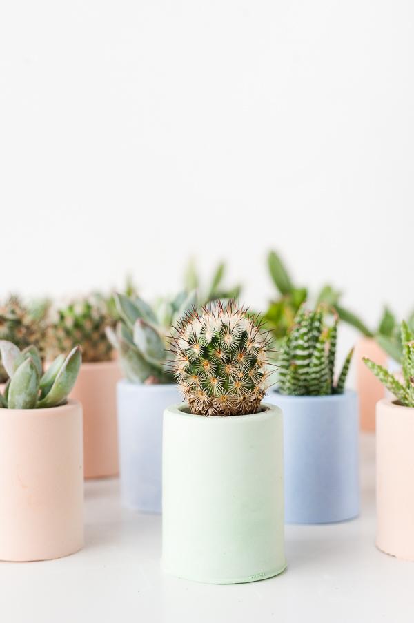 DIY: maceteros mini de colores para tus cactus favoritos