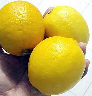 Lemon Mampu Membersihkan Racun Dalam Tubuh