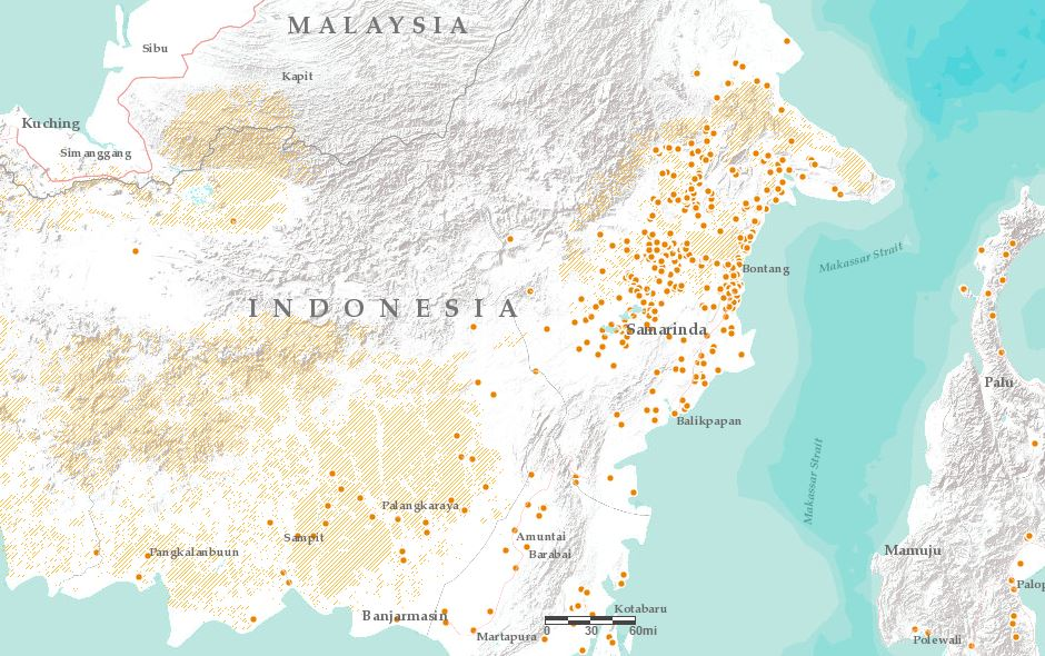 East Kalimantan: Orangutan habitat (yellow areas) and forest fires so far in 2016 (orange dots)