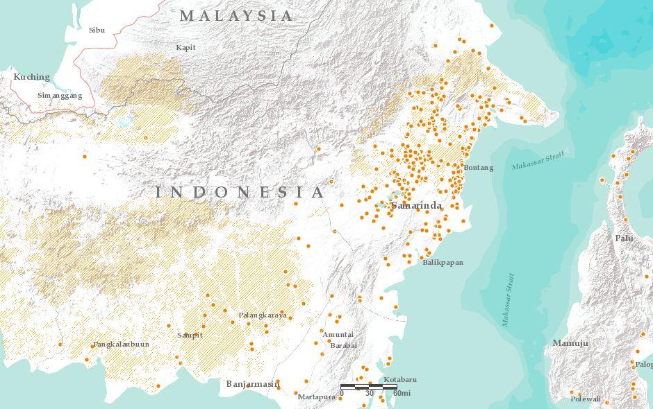 East Kalimantan: Orangutan habitat (yellow areas) and forest fires so far in 2016 (orange dots)