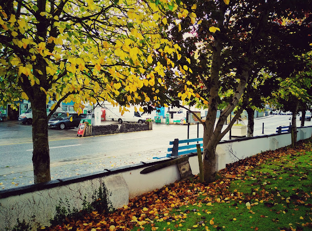 bench, road, village, Oughterard, Galway