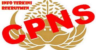 Siap-siap!! Pemerintah Buka Rekrutmen 100 Ribu CPNS Bulan Oktober, Guru Honorer Diutamakan