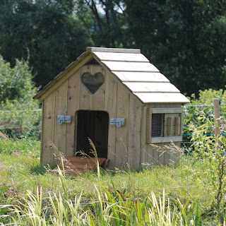 Duck and Goose Houses - Flyte so Fancy