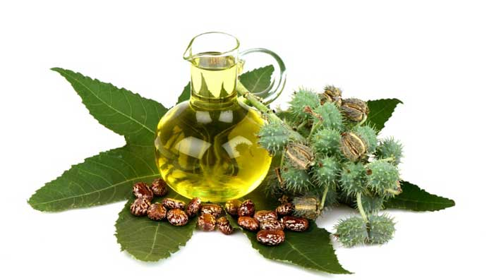 Castor Oil Home Remedies For Hair