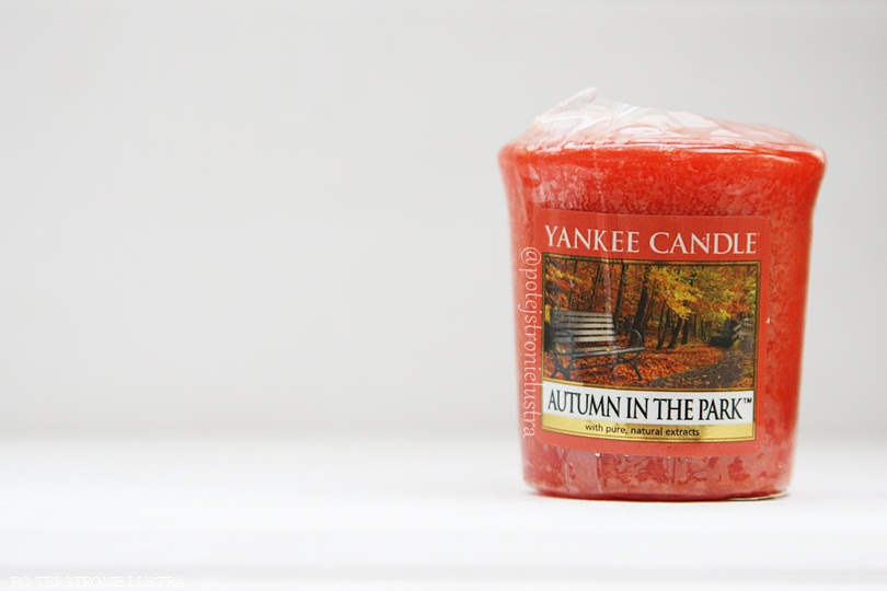 sampler yankee candle autumn in the park