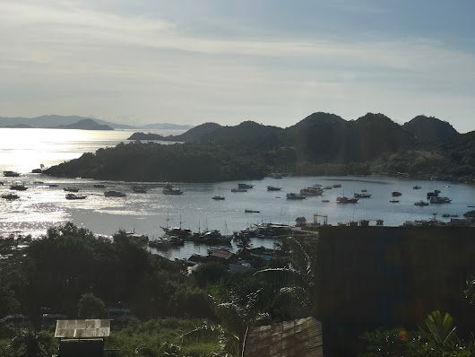 Komodo: Day One - West Life
