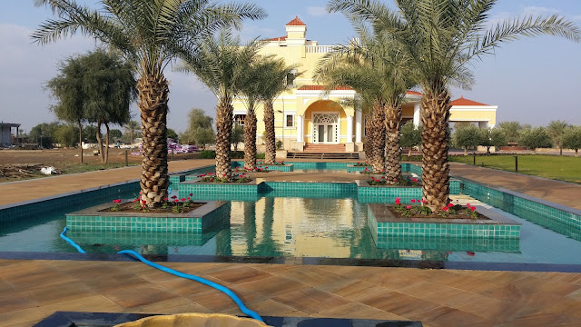 pool cleaning companies in dubai