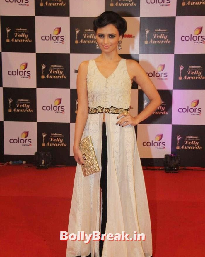 Roshni Chopra, Pics on Red Carpet of 13th Indian Telly Awards 2014