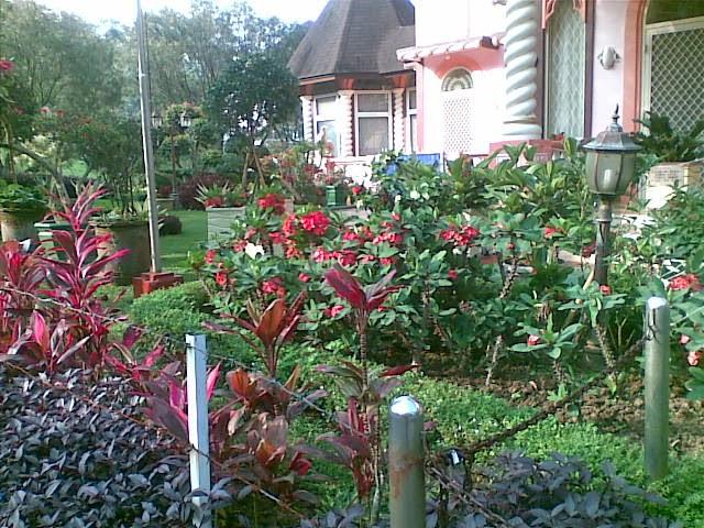 Foto(5507) jual villa & tanah di kota bunga puncak jual tanah di kota bunga