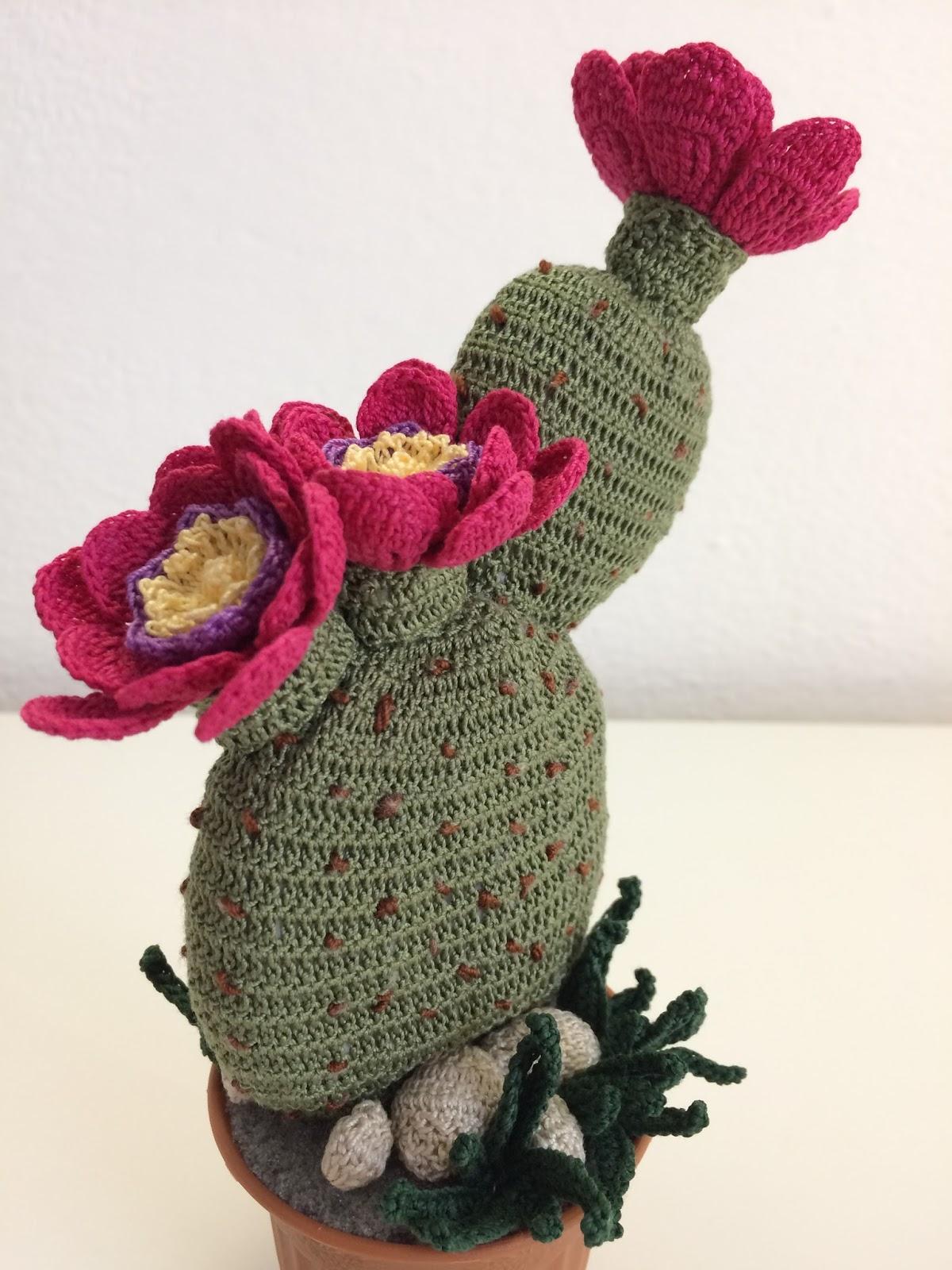 Il blog di sam spiegazione della pianta grassa opuntia - Fiore collegare i punti ...