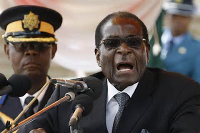 Zimbabwe politicians argue over crocodiles, underwear theft
