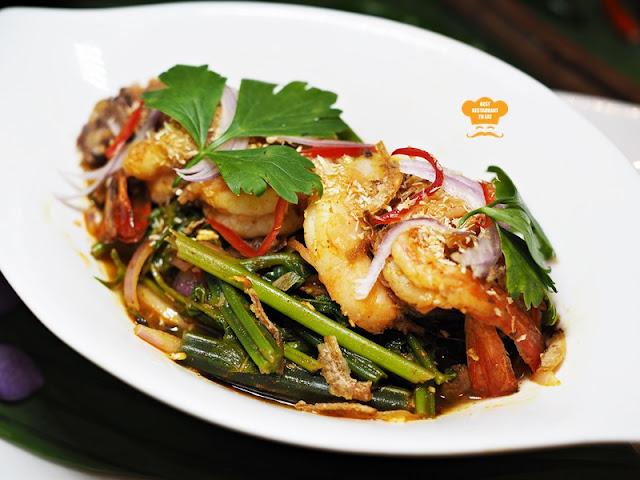 Southern Thai Food - Pak Tai - YUM PAK KOOD - Squid Salad