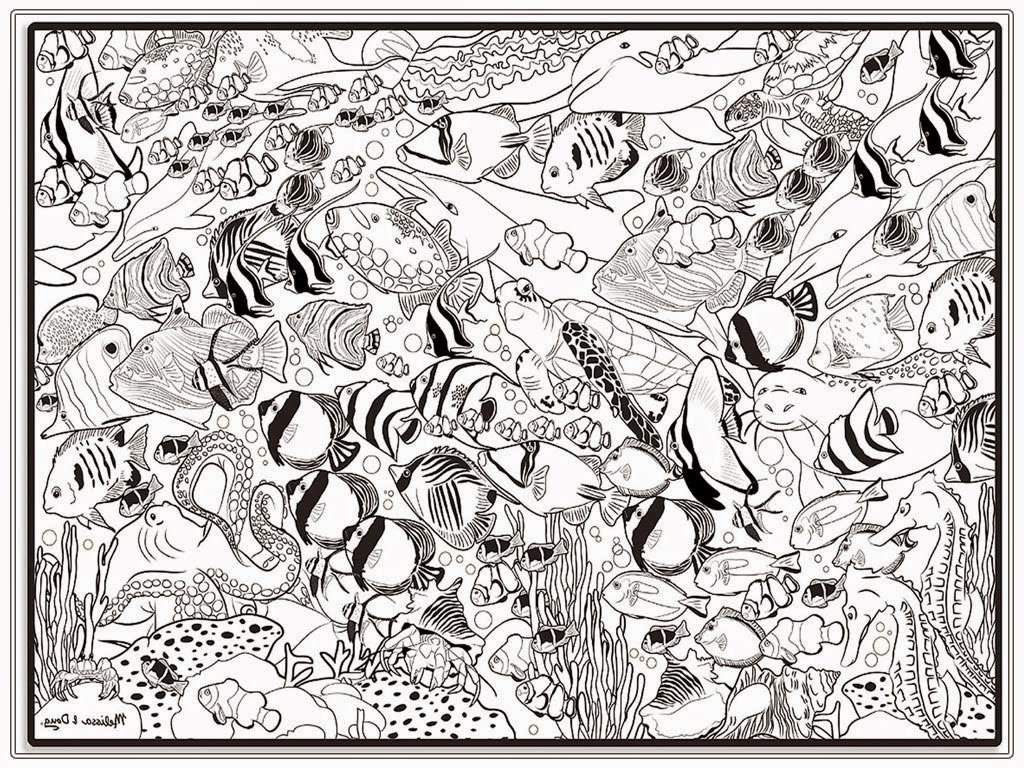 Emejing Freshwater Fish Coloring Pages Photos Style And Ideas