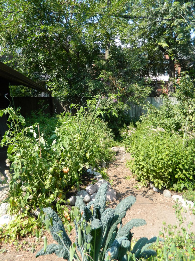 Raised ecological garden beds by garden muses-a Toronto gardening blog