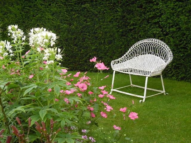 metalowa ławka wśród kwiatów