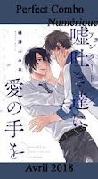 http://mangaconseil.com/manga-manhwa-manhua/digital-manga-guild/boy's-love/the-perfect-combo/