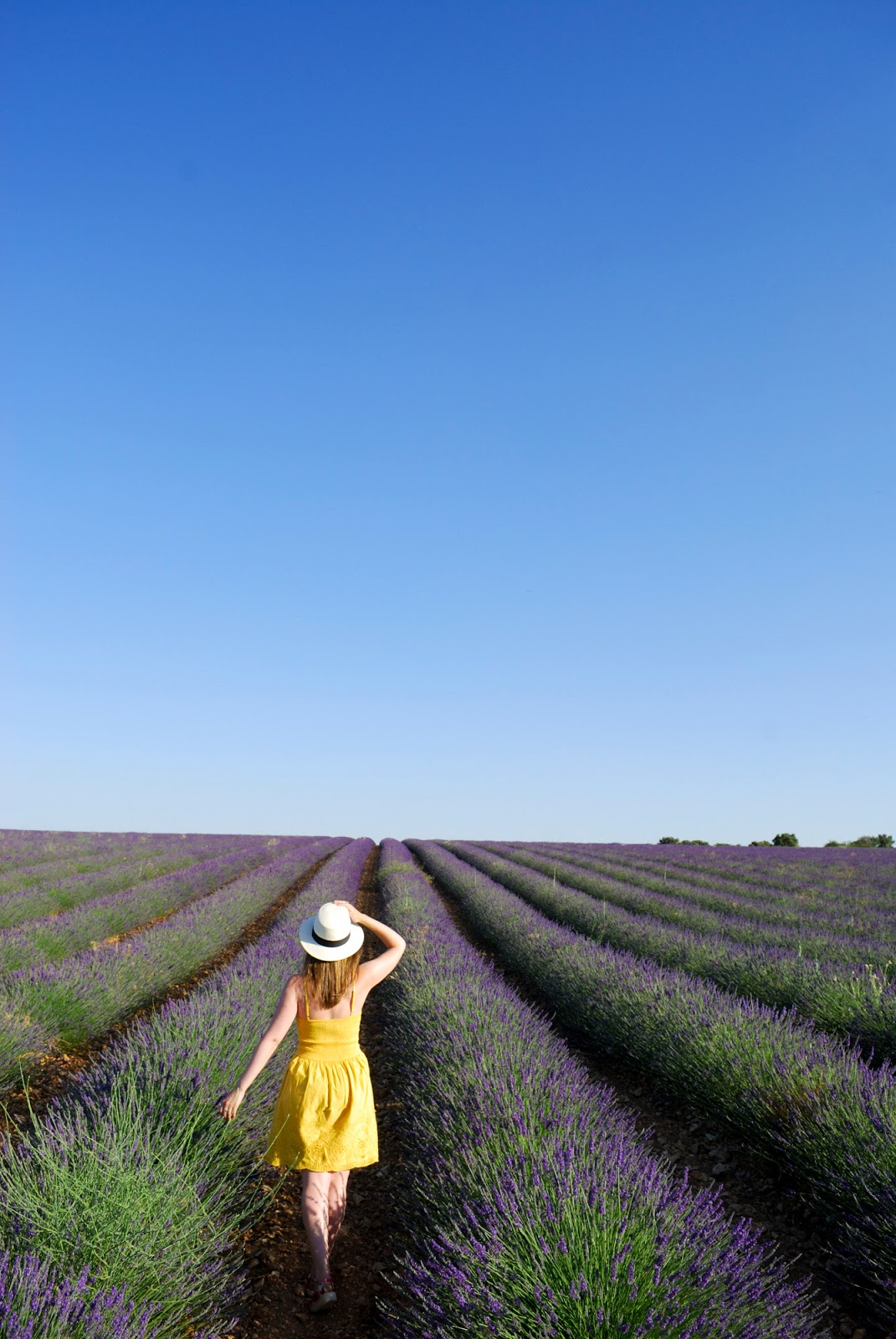 instagram worthy spots places spain instagrammable brihuega lavender field